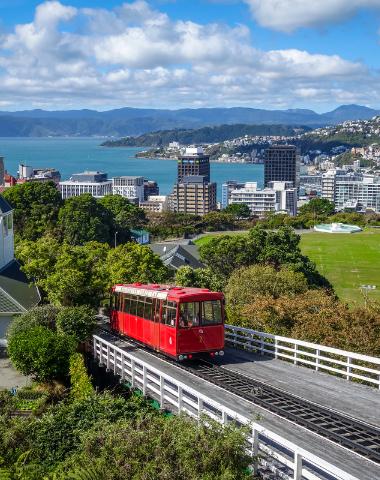 Séjour linguistique à Wellington, capitale de la Nouvelle-Zélande