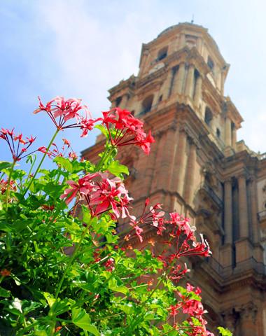 Mit fRilingue in Malaga Spanisch lernen